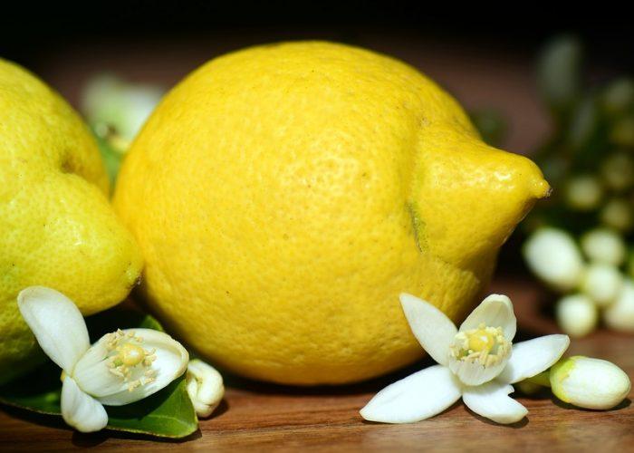 Limone - Il diario dei profumi